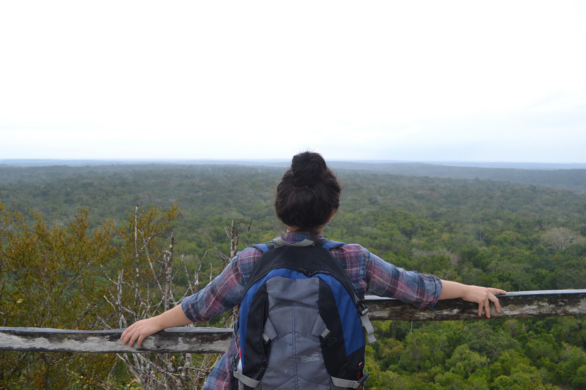 View from La Danta