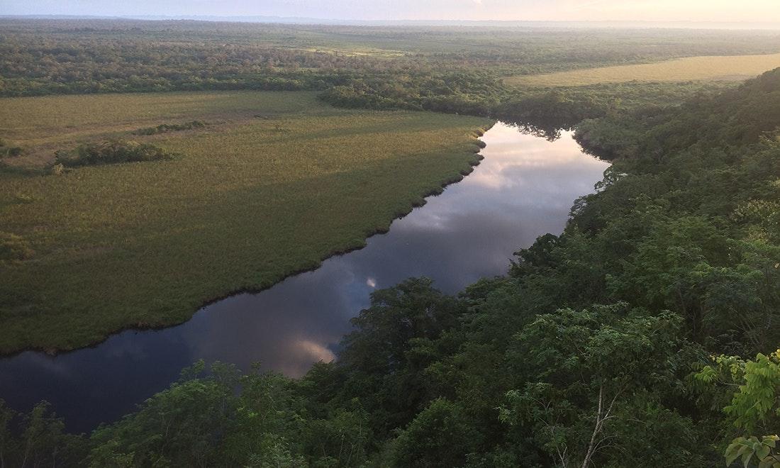 Las Guacamayas Biological Station and Waca Peru Site