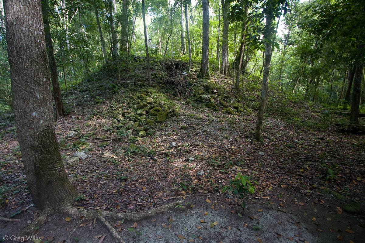 Structure near the south pyramid in Tintal