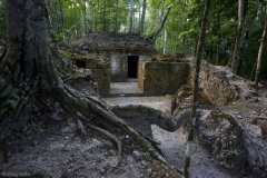 La Florida structure