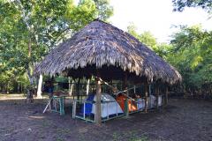En el campamento de Puerto Arturo, San Andrés, Petén